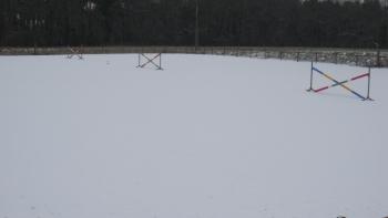 Janvier 2010 Sous la neige !