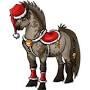 Stages club et poney club vacances de Noël