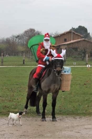 Le Noel du poney club